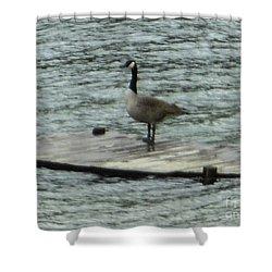 Canada Goose Lake Dock Shower Curtain