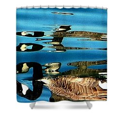 Canada Goose Reflected Shower Curtain by Karen Molenaar Terrell