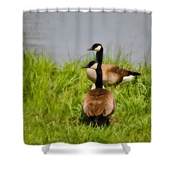 Canadian Geese At Loch Mary - Earlington Kentucky - 2a Shower Curtain