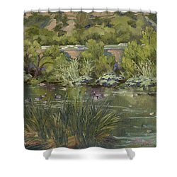 Canadian Geese La River Shower Curtain