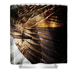 Shower Curtain featuring the digital art Canadian Goose Wing  by Ayasha Loya