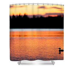 Canadian Loon Sunset 1 Shower Curtain by Ian MacDonald
