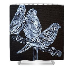 Canaries Shower Curtain by Fabrizio Cassetta