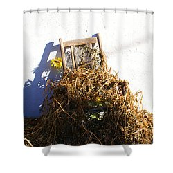 Cane Back Chair And Sunflower Shower Curtain