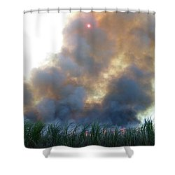 Cane Corona I Shower Curtain by Alexander Van Berg