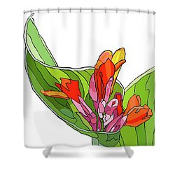 Canna Bud Shower Curtain