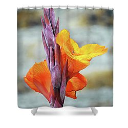 Shower Curtain featuring the photograph Cannas by Terence Davis