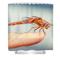 Can't Make Up My Mind Shower Curtain by TC Morgan