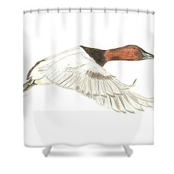 Canvasback Shower Curtain