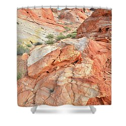 Canyon Color In Valley Of Fire Shower Curtain