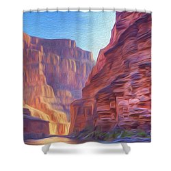 Canyon Light Shower Curtain by Walter Colvin