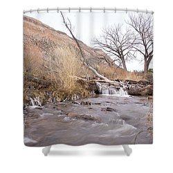 Canyon Stream Current Shower Curtain by Ricky Dean