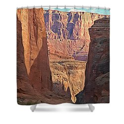 Canyon Walls Shower Curtain by Walter Colvin