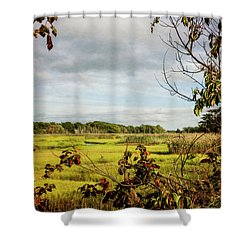 Cape Cod Marsh 3 Shower Curtain