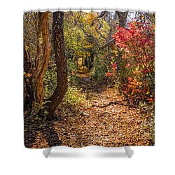 Cape Cod Path Shower Curtain