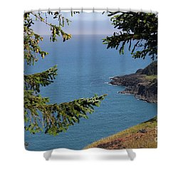 Cape Foulweather  Shower Curtain
