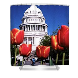 Capital Colors Shower Curtain