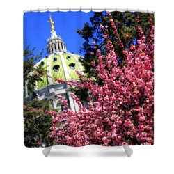 Capitol In Bloom Shower Curtain by Shelley Neff