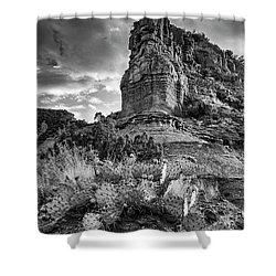 Shower Curtain featuring the photograph Caprock And Cactus by Stephen Stookey