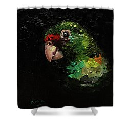 Captain The Parrot Shower Curtain by Janet Garcia