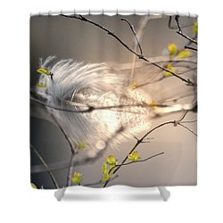Captured Small Feather Shower Curtain