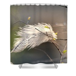 Captured Small Feather_04 Shower Curtain
