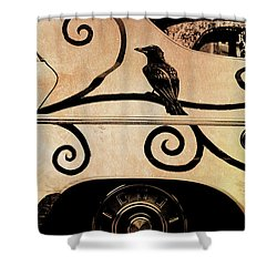 Car Art Shower Curtain