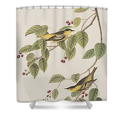 Carbonated Warbler Shower Curtain