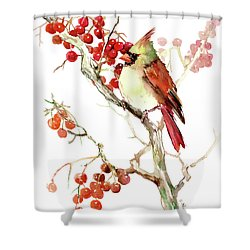 Cardinal Bird And Berries Shower Curtain