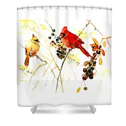Cardinal Birds And Berries Shower Curtain