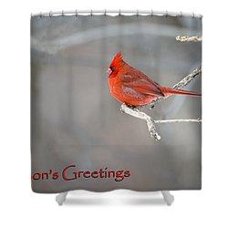 Shower Curtain featuring the photograph Cardinal Christmas Card by Gary Hall