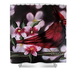 Cardinal Shower Curtain by Dianna Lewis