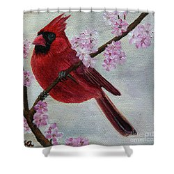 Cardinal In Cherry Blossoms Shower Curtain