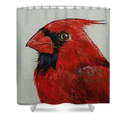 Cardinal Shower Curtain by Michael Creese