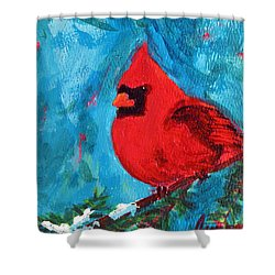 Cardinal Red Bird Watercolor Modern Art Shower Curtain