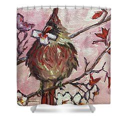 Cardinal With A Cherry Blossom Shower Curtain