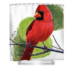 Cardinal1 Shower Curtain