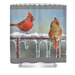 Cardinals And Icicles Shower Curtain