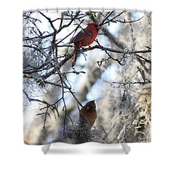 Cardinals In Mossy Tree Shower Curtain