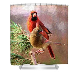 Cardinals2 Shower Curtain