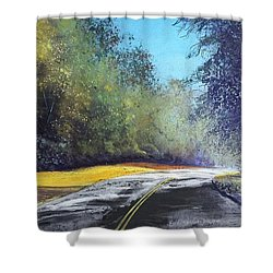 Carefree Highway Shower Curtain