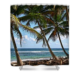 Caribbean Palms Shower Curtain