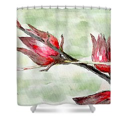 Caribbean Scenes - Sorrel Plant Shower Curtain