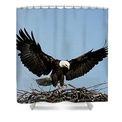 Cape Vincent Eagle Shower Curtain