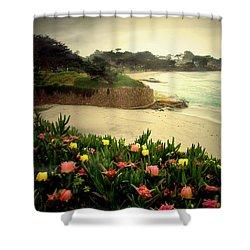 Carmel Beach And Iceplant Shower Curtain by Joyce Dickens