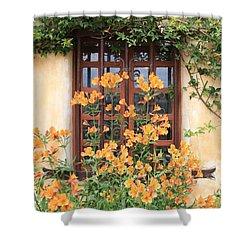 Carmel Mission Window Shower Curtain