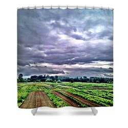 Carnation Shower Curtain