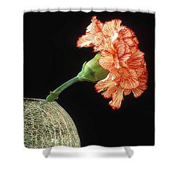 Carnation Shower Curtain by Laurie Paci