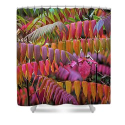 Shower Curtain featuring the photograph Carnival Of Autumn Color by Bill Pevlor
