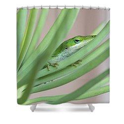 Carolina Anole Shower Curtain